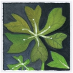 small paintings516
